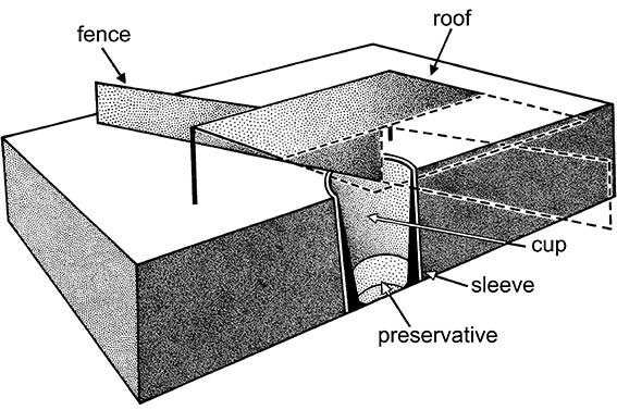 A diagrammatic pitfall trap cut away to show the inground cup filled with preserving fluid.