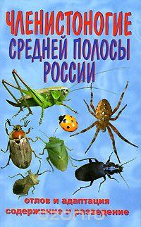 http://www.entomologa.ru/images/ozon/63.jpg