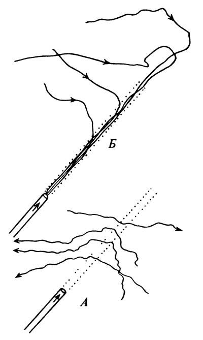 Рисунок, иллюстрирующий хемотаксис